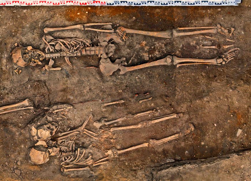 Neubrandenburg, Poststraße. Die Mordopfer von 1770 nach der Freilegung im August 2016